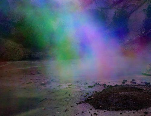 Yellowstone Tri-color 2