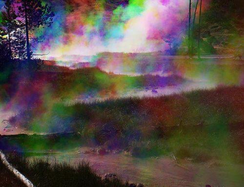 Yellowstone Tri-color 4