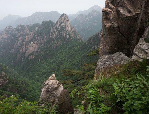Yellow Mountains 4