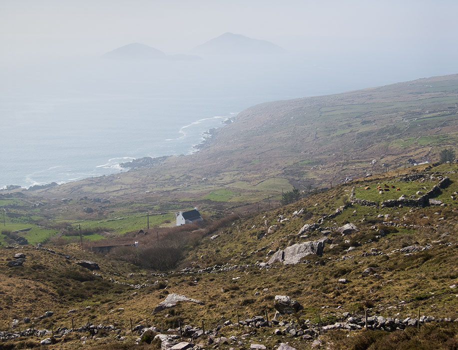 /product//deenish-and-scariff-islands-ring-of-kerry/