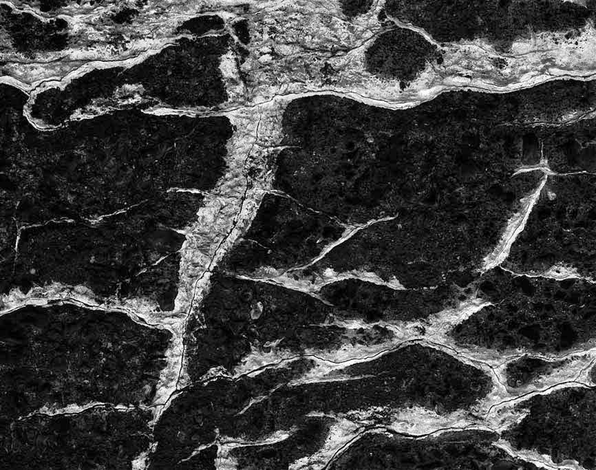 /product//mineralization-concrete-wall-st-louis-missouri-1998/