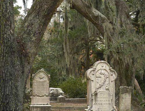Boneventure, Savannah, Georgia 3
