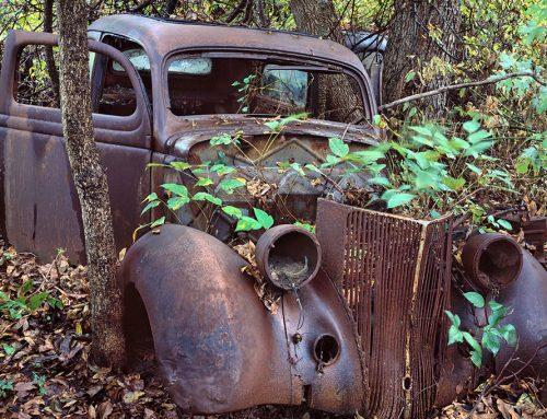 Car, Poison Ivy, Ste. Genevieve, Missouri